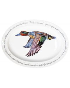 39cm Oval Green-winged Teal