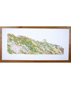 Canford Cliffs looking east Poole print Richard Bramble