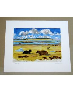 Highland Cows on the beach with Kirkibost Island North Uist Print