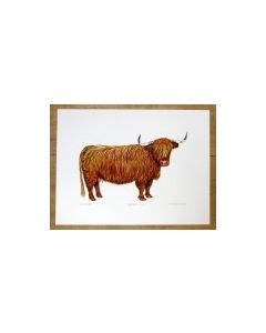 Highland Cow (facing right) large print size only