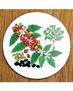 Coffee Coaster by Richard Bramble