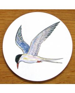 Tern Coaster by Richard Bramble