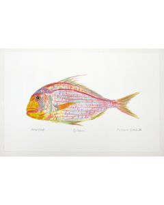 Tropical Bream by Richard Bramble