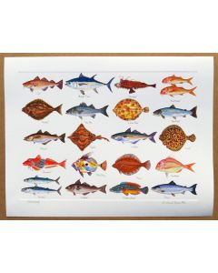 Richard Bramble Sea Fish Print