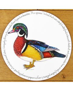 Wood Duck Tablemat by Richard Bramble