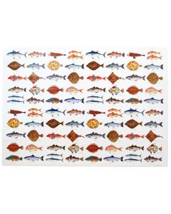 Richard Bramble Seafish Gift Wrapping Paper